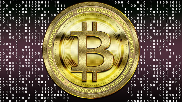 Bitcoin oro digital