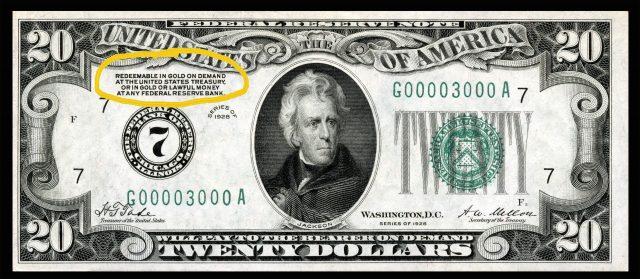 dolar del patron oro